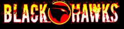 Blackhawks (2011) New 52 logo2