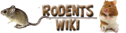 Rodents Wiki
