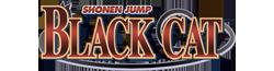 BlackCat Wiki-wordmark