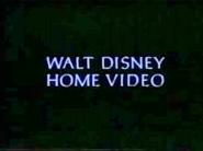 185px-Walt Disney Studios Home Entertainment Logo 1995 Walt Disney Home Video