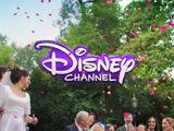 Disney Channel (International)/Wordmark (Grass Age) Logo Idents