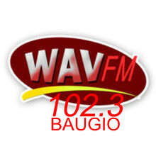 WAVFM