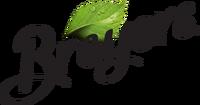 Breyers-new