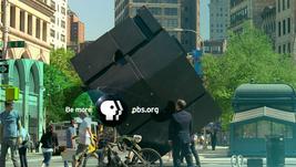 PBS 2009's 5