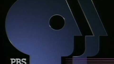 Public Broadcasting Service ident (1989)