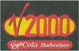 V Festival 2000