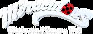 Polish Logo (Netflix)
