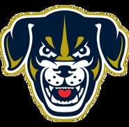 Saltdogs hat logo