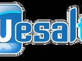 Wesal TV