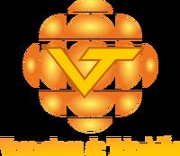 VTV logo 1998-2000