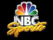 Nbc-sports-logo-600x450