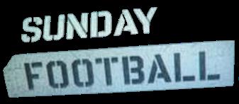 SS Logo (2011-2012)