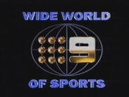 9 WWOS 1992