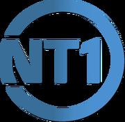 NT1 2005 logo