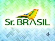 Sr.brasil2008
