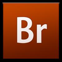 Adobe Bridge (2007-2008)