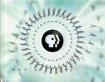 PBS 5