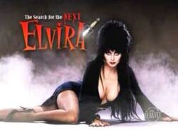 Search next elvira