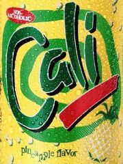 Cali 2004