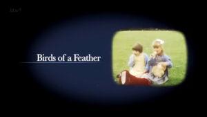 BirdsofaFeather2014