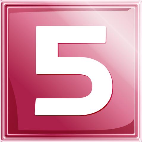 File:Net5 logo 2007.png