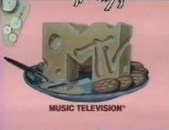 Mtvdiary1992