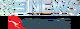 NN In Flight News 2008-2009