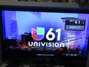 Wqhs univision 61 id 2017