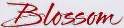 Blossom (TV) logo