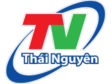 TN Thai Nguyen old logo