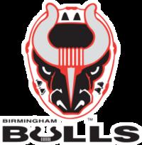 Birmingham Bulls (ECHL) logo