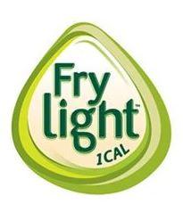 Frylightlogo2013