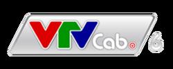 VTVCab 6 logo