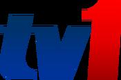 Logo rtm tv1 new