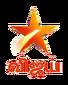 Star Vijay 2017