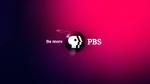 PBS 2009's 3