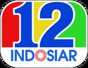 12 Tahun Indosiar