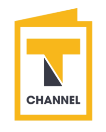 Channel T (SCTV19) logo