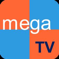 MegaTVHN2010-SD