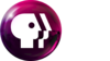 PBS2009Whitetext Magenta