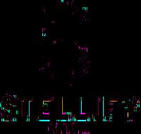 StellifyMedia