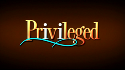 Privileged title logo