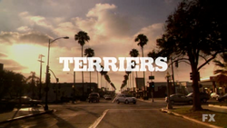 Terriers 2010 Intertitle