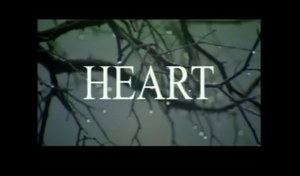 Heart 2006