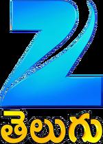 Zee Telugu 2011