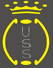 Salernitana primo stemma 1919