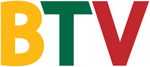 BTV Lithuania Logo (100 Years of Lithuania)