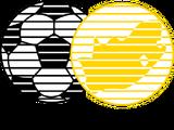 South African Football Association