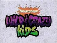 Wild---Crazy-Kids-old-school-nickelodeon-516354 316 237