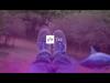 YLE TV2 Ident (2012-present) (15)